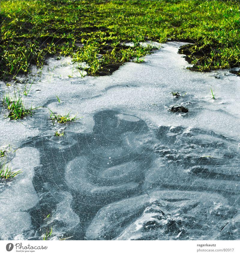 Eis Winter kalt Wiese Eis Feld Frost gefroren Pfütze Alb