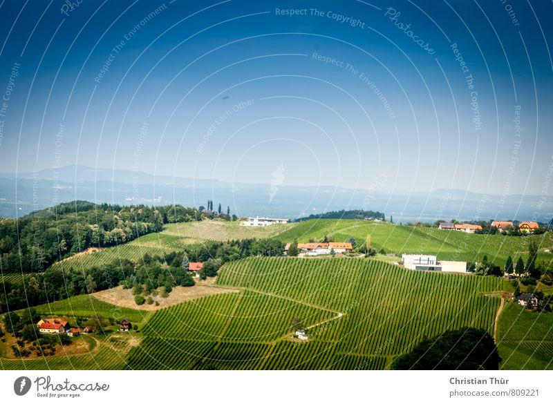 Panoramablick im Sommer Natur Ferien & Urlaub & Reisen blau grün Baum Erholung Umwelt Berge u. Gebirge Leben Wiese Gefühle Stimmung Freizeit & Hobby