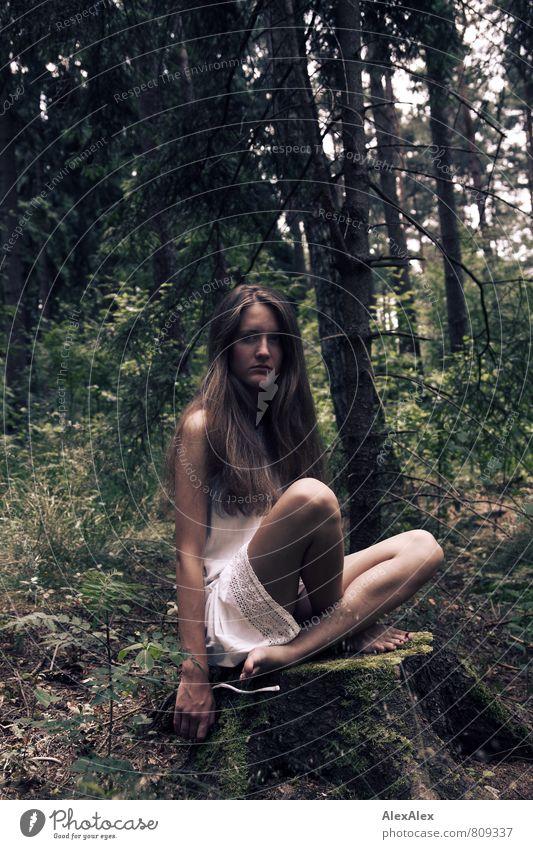 Mädchen Abenteuer Junge Frau Jugendliche Beine 18-30 Jahre Erwachsene Natur Landschaft Baum Sträucher Blatt Baumstumpf Wald Kleid Barfuß brünett langhaarig