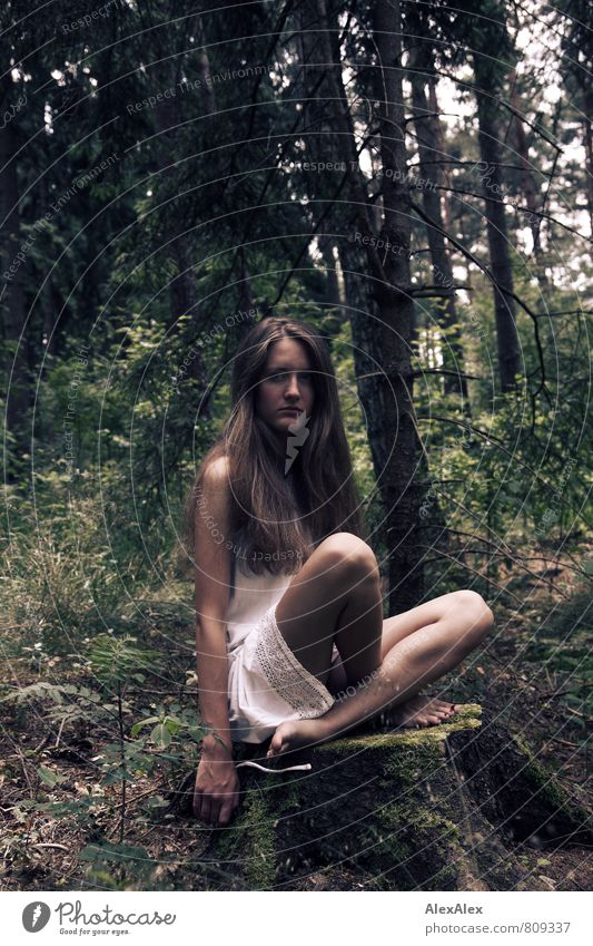 Mädchen Natur Jugendliche schön Baum Junge Frau Landschaft Blatt 18-30 Jahre Wald Erwachsene Beine träumen wild sitzen Sträucher frei