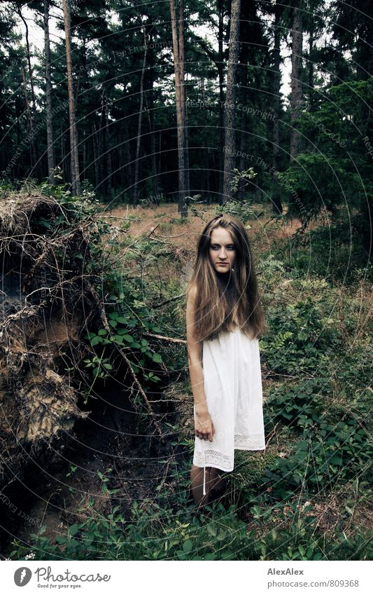 ...sie könnte Bäume ausreißen! Abenteuer Junge Frau Jugendliche Körper Haare & Frisuren 18-30 Jahre Erwachsene Natur Landschaft Baum Gras Baumwurzel Wald