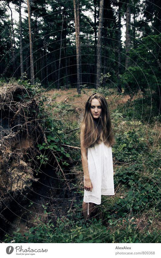 ...sie könnte Bäume ausreißen! Natur Jugendliche schön Baum Junge Frau Landschaft 18-30 Jahre dunkel Wald Erwachsene Gras natürlich Haare & Frisuren Körper