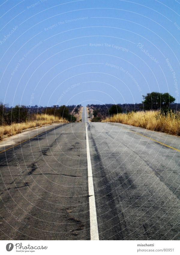 Krüger Park links Einsamkeit Ferne Straße Wege & Pfade leer Afrika Wüste Asphalt Autobahn Verkehrswege Straßenbelag Steppe Ödland Südafrika Landstraße