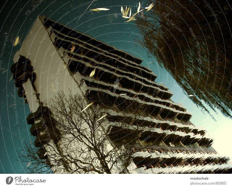 SCHREIEND FILIGRAN Pfütze wirklich Nebel nass Herbst Haus Hochhaus Gebäude Material Fenster live Block Beton Etage trist dunkel Leidenschaft Spiegel Vermieter