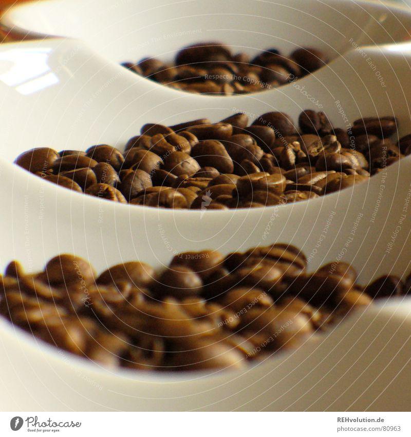 kalter kaffee 3 Wärme braun Kaffee Physik Café lecker Schalen & Schüsseln wach Bohnen Kaffeebohnen Koffein