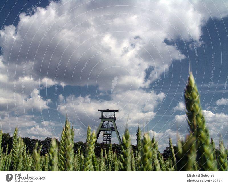 schacht im feld Atommüll Feld Sommer Wolken Weizen Industrie schacht konrad Himmel Wind