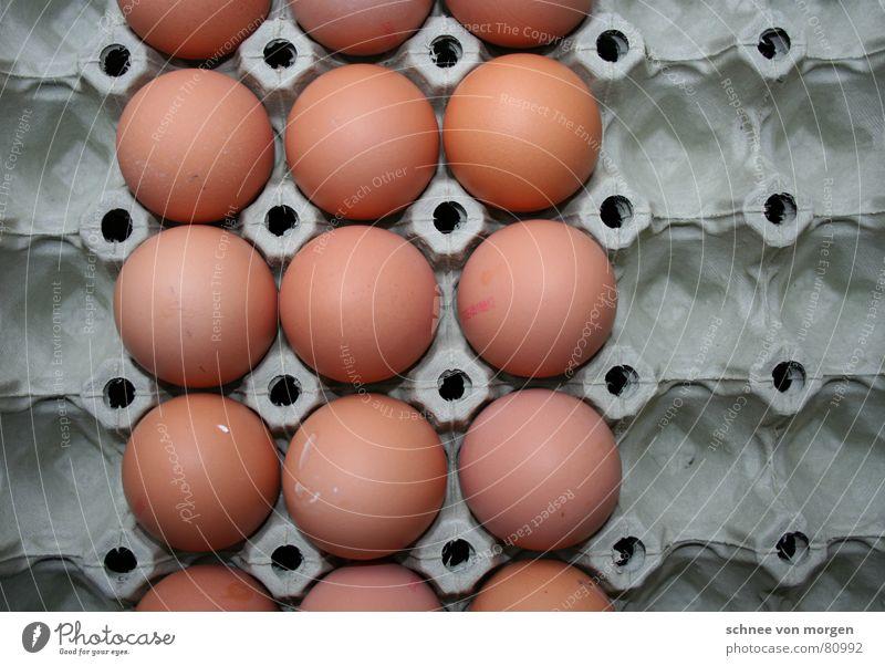 etwas ausbrüten Karton identisch Pappschachtel gleich Rührei Eiergerichte grau Eierschale horizontal vertikal rund Verschiedenheit Angsthase Eigelb Uniform