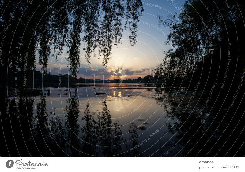 Seepark sunset Ferien & Urlaub & Reisen Ferne Freiheit Sommer Umwelt Natur Landschaft Pflanze Wasser Himmel Wolken Horizont Sonne Wetter Baum Blatt dunkel blau
