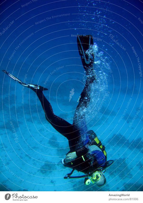 Chill out Wassersport Unendlichkeit Taucher tauchen Meer Ägypten wiederkommen Kopfstand Freude Unterwasseraufnahme blau tief Freiheit fun