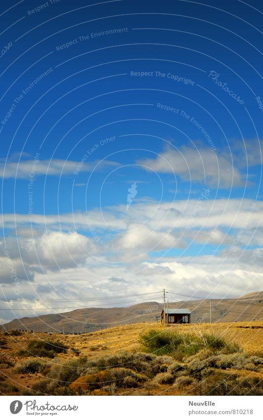 El Calafate II. Natur Landschaft Tier Erde Luft Himmel Wolken Sonne Herbst Schönes Wetter Feld Berge u. Gebirge alt kalt schön stachelig Stadt wild Patagonien
