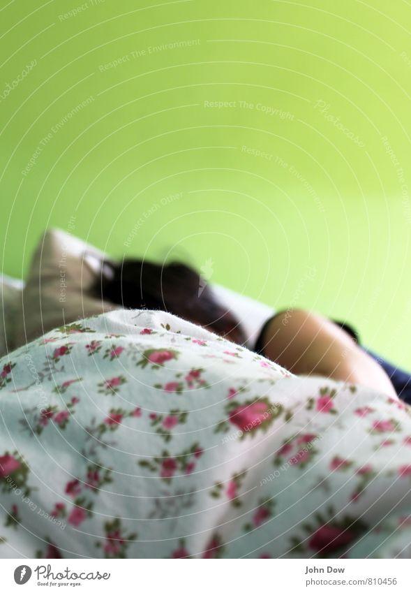 morning has broken Jugendliche Pflanze Erholung Junge Frau ruhig Haare & Frisuren liegen Zufriedenheit Arme genießen schlafen Bettwäsche verträumt Decke