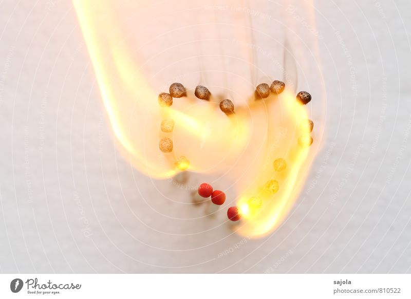 D - entflammt - 500 Holz Zeichen Herz Rauchen heiß Gefühle Liebe Verliebtheit Treue Romantik Begierde herzförmig Feuer Brand brennen anzünden Streichholz