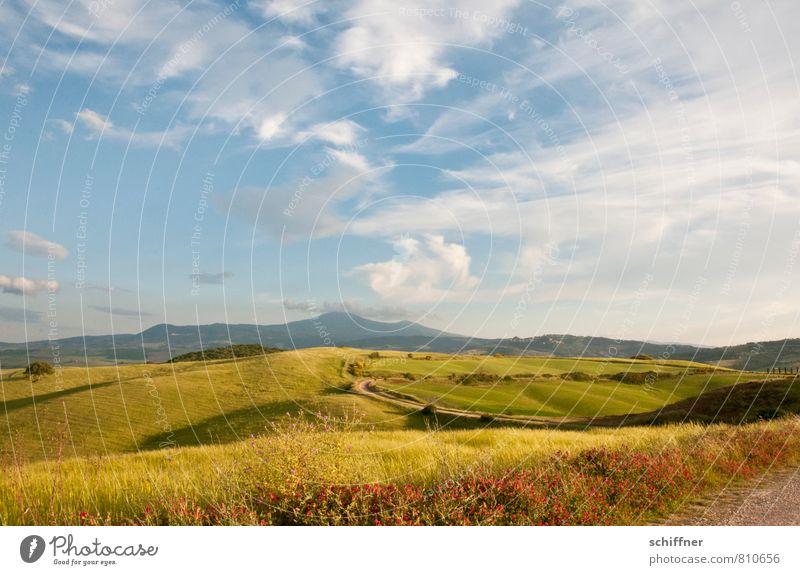Weites Land Umwelt Natur Landschaft Pflanze Himmel Wolken Sonnenlicht Sommer Schönes Wetter Gras Sträucher Wiese Feld Hügel Berge u. Gebirge Kitsch schön blau
