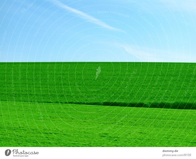 Picknick Zeit !!! Wiese grün Gras Himmel blau kaz