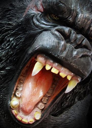 GING GONG Gorilla Rachen King Kong Affen Urwald Wildnis gefährlich Frieden schwarz Fell Säugetier Angst Panik Kraft gorillas im nebel throat tame tongue tarzan