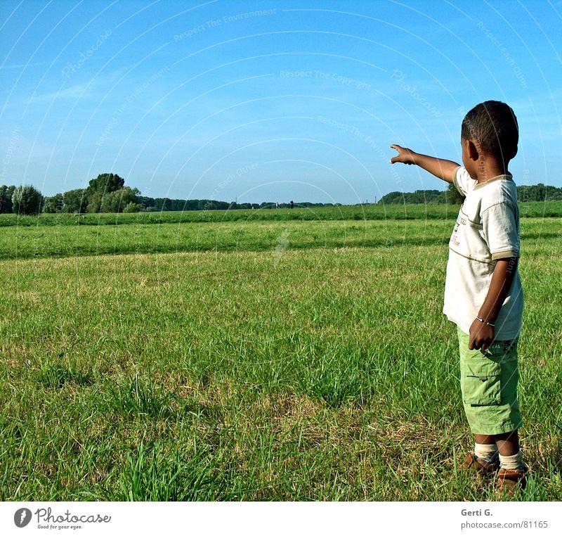 da ganz weit hinten... Richtung Kind Zeigefinger Wiese Hinweis Kindergartenkind grün himmelblau Baum Gras grasgrün Hose zeigen führen Konzentration Mensch