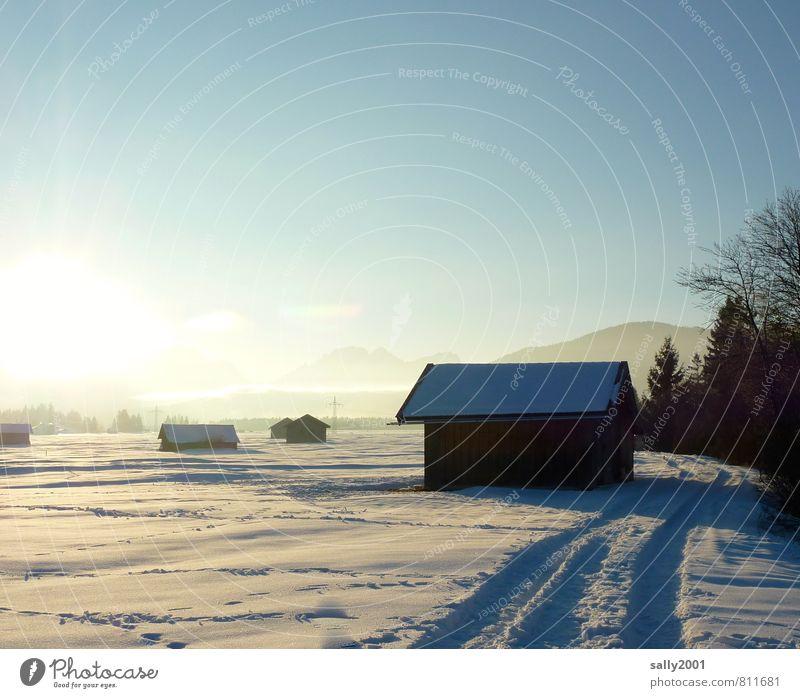 Wintersonne Natur weiß Sonne Baum ruhig kalt Wiese Schnee Wege & Pfade Feld Schönes Wetter Alpen Spuren Gelassenheit Hütte