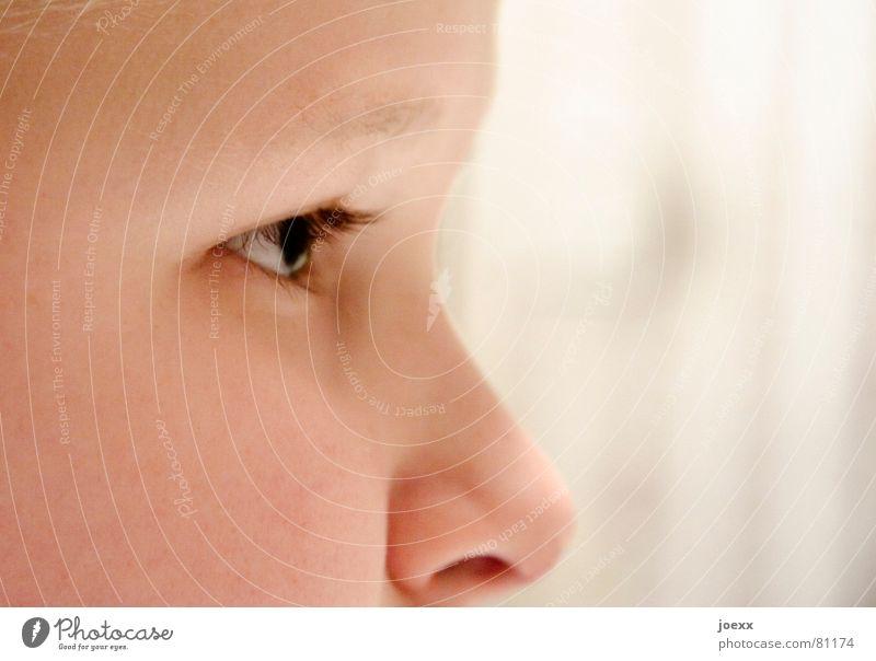 Profilant Mensch Kind weiß schwarz Gesicht Auge Junge Kopf Denken hell braun Kindheit Nase authentisch Spitze Konzentration