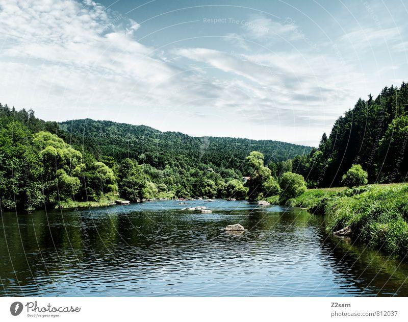 Oberpfalz Himmel Natur blau grün Sommer Baum Landschaft ruhig Umwelt Wege & Pfade natürlich Wachstum Idylle Sträucher frisch Perspektive