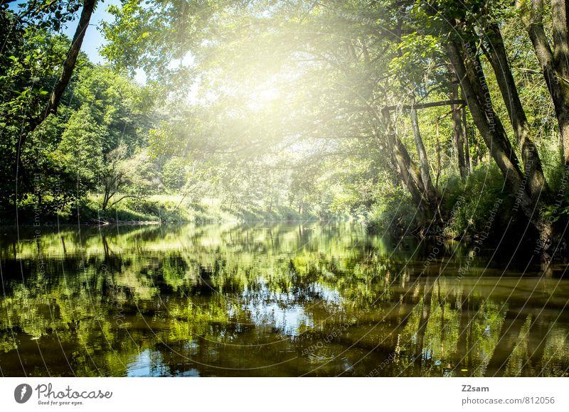 2000 Ferien & Urlaub & Reisen Tourismus Ausflug Sommer Sommerurlaub Sonne Umwelt Natur Landschaft Schönes Wetter Pflanze Baum Sträucher Flussufer ästhetisch