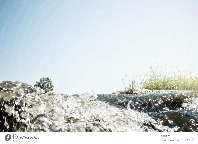 Erfrischung Himmel Natur blau grün Wasser Sommer Sonne Baum ruhig Landschaft Umwelt Wiese natürlich Gesundheit fliegen Idylle