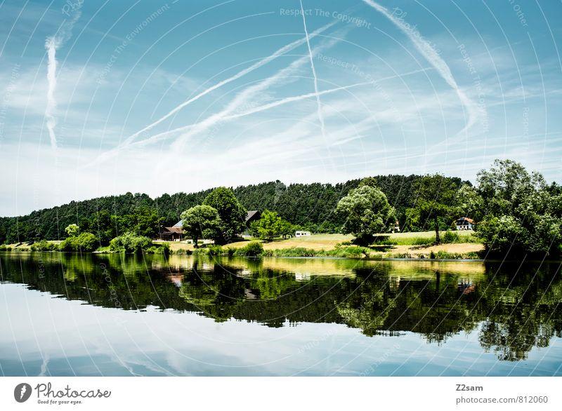 wie gemalt! Sommer Umwelt Natur Landschaft Himmel Wolken Schönes Wetter Baum Sträucher Seeufer Flussufer sportlich frisch nachhaltig natürlich Sauberkeit blau