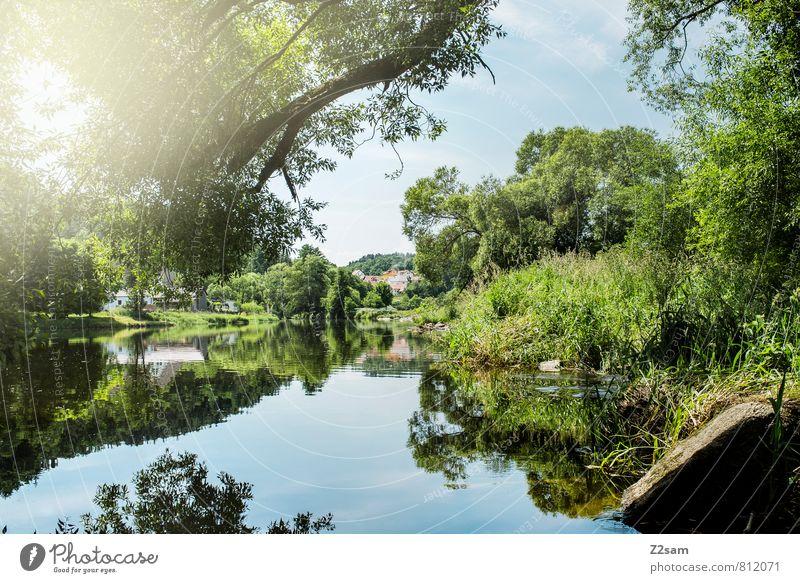 Der schöne Regen Ferien & Urlaub & Reisen Ausflug Sommerurlaub Sonne Umwelt Natur Landschaft Himmel Baum Sträucher Flussufer nachhaltig natürlich blau grün