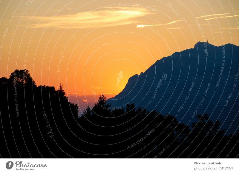 Bergleuchten Umwelt Natur Landschaft Himmel Wolken Sonne Sonnenaufgang Sonnenuntergang Sonnenlicht Sommer Wetter Schönes Wetter Baum Alpen Berge u. Gebirge