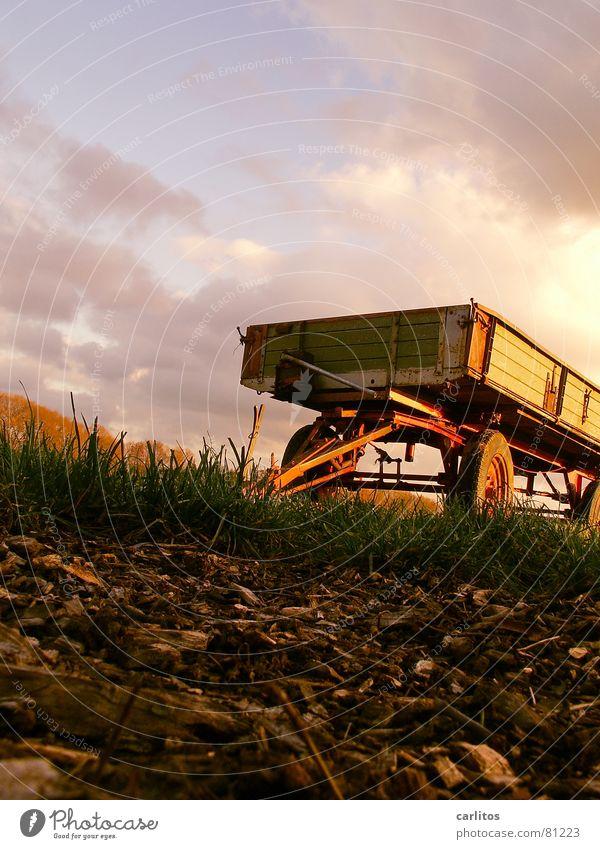 alter Hänger Landhandel sinnlos Landwirtschaft Bauernhof Ackerbau Froschperspektive Wiese Schrott Gras Schlepper grün nutzlos Wagen Eisenbahnwaggon überflüssig