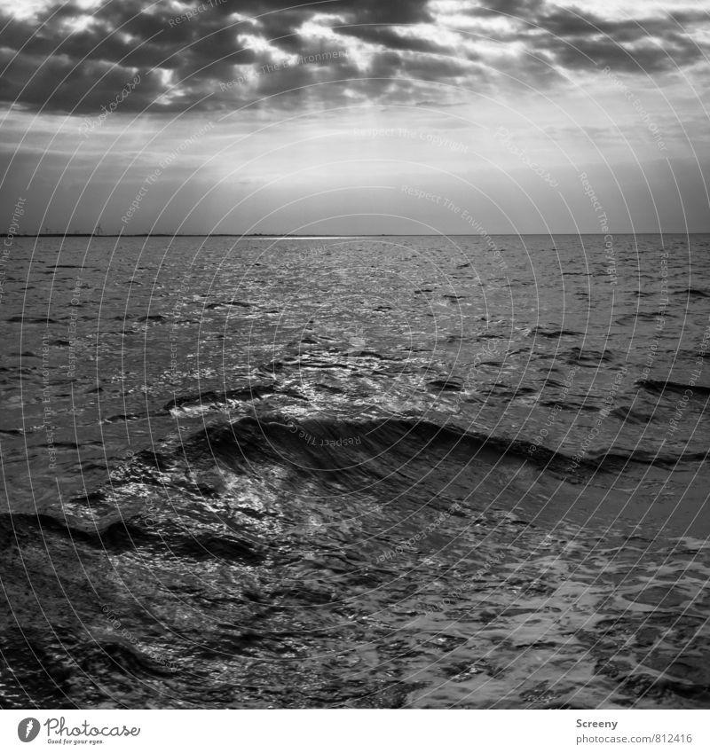Wetter zieht auf Himmel Natur Ferien & Urlaub & Reisen Sommer Meer ruhig Landschaft Wolken Horizont Wellen frei Tourismus Insel Unendlichkeit Gelassenheit Nordsee