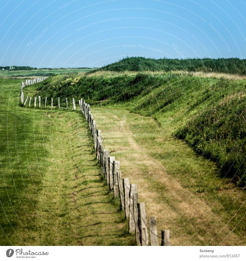 Umzäunt Himmel Natur Ferien & Urlaub & Reisen blau grün Sommer Landschaft Tier Wiese Feld Wachstum Tourismus wandern Insel Ausflug Zaun