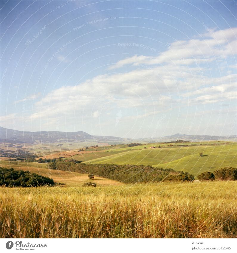 Tuszien Himmel Natur Ferien & Urlaub & Reisen Sommer Landschaft Wolken Ferne Wald Umwelt Wärme natürlich Feld Tourismus wandern Ausflug Schönes Wetter
