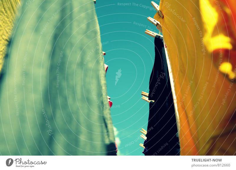 Luftgetrocknet 2 Himmel Natur schön Farbe Sommer Sonne Wärme Glück Gesundheit Garten Freizeit & Hobby Wohnung Häusliches Leben Wind Energie