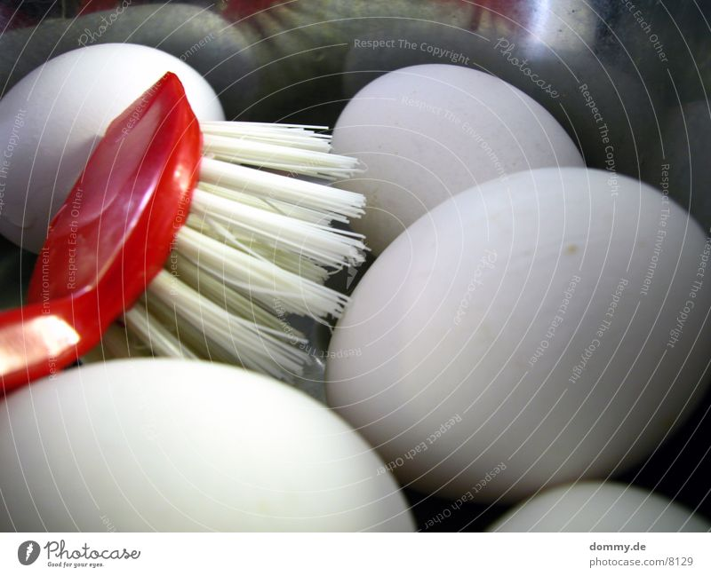 meine Eier waschen... Ernährung Aluminium Bürste