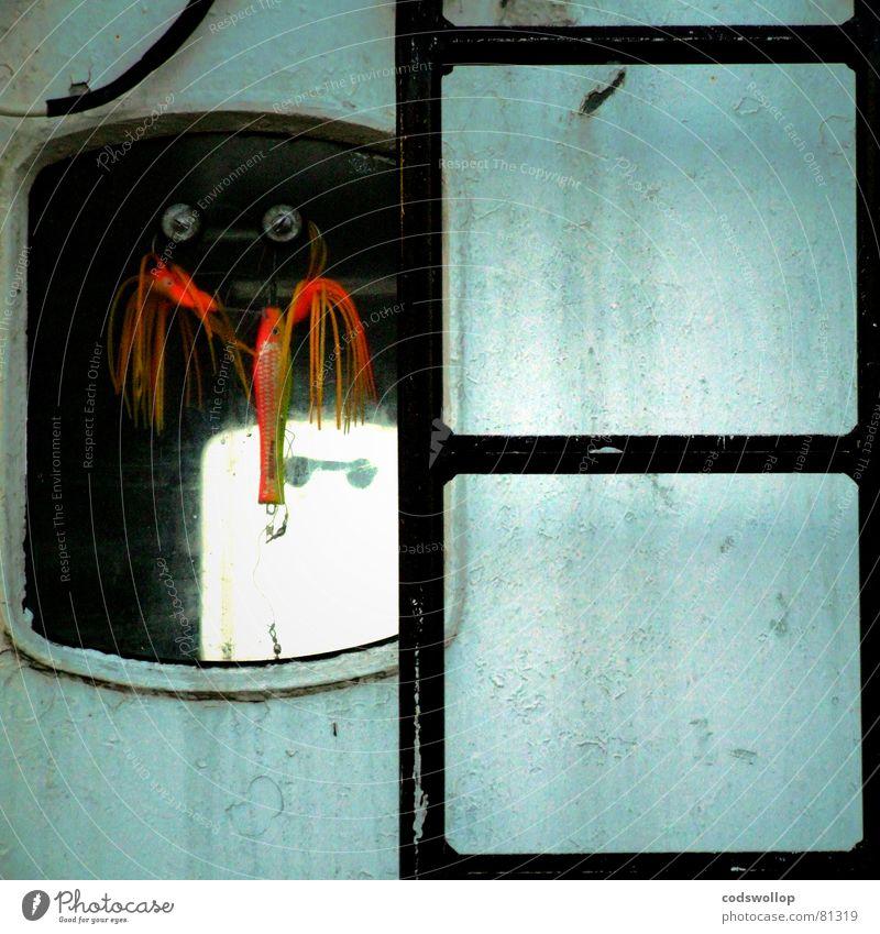 lockmittel Fenster orange Industrie Hafen Leiter Nordsee Tintenfisch Angeln zerkleinern Köder Octopus