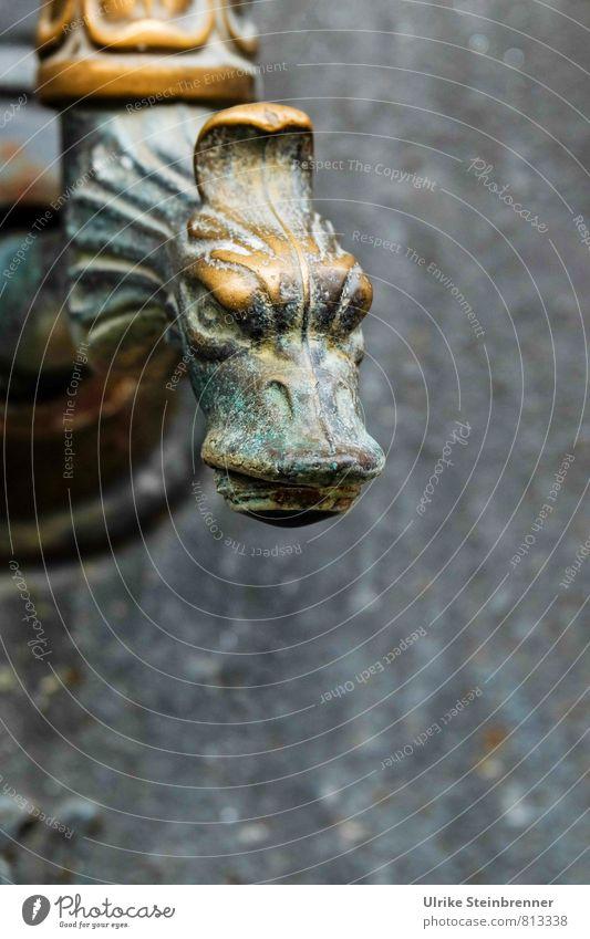 Grrrr alt Stein Kunst Metall gold bedrohlich beobachten Brunnen Hautfalten Aggression böse Friedhof antik Drache Ärger Maul