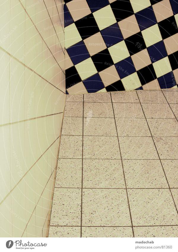KÖNIGSSCHWUND schwarz Architektur Linie Häusliches Leben Dinge Grafik u. Illustration Lebewesen Verbindung Typ Fuge Konstruktion Gitter kariert graphisch