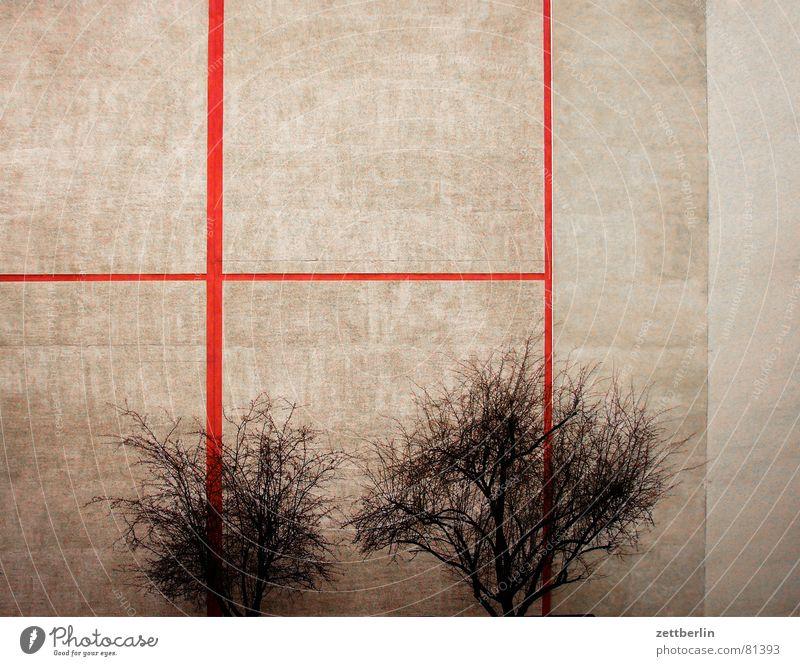 Bäume Baum rot Haus Wärme grau 2 paarweise Ecke Sträucher Vergänglichkeit Physik Bauernhof Baumstamm parallel Hinterhof beige