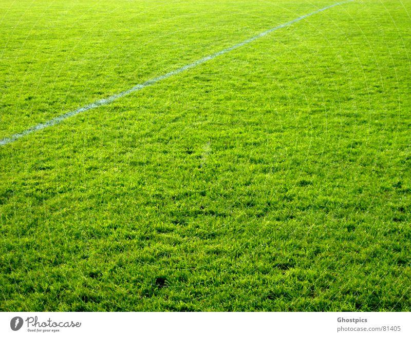 Grüner geht es nicht ;) grün Farbe Sport Spielen Linie Fußball Feld Ballsport