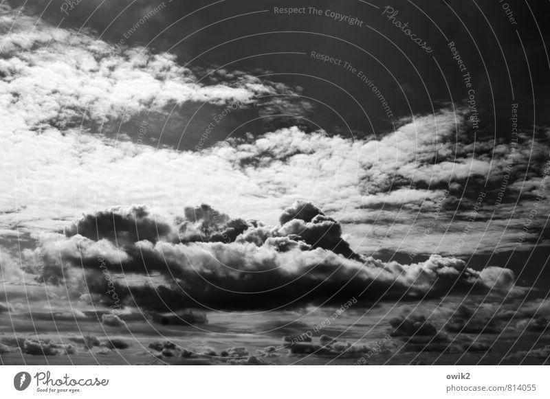 Wolken schaufeln ruhig Ferne dunkel Umwelt Bewegung natürlich Freiheit oben Wetter elegant Zufriedenheit groß Klima Schönes Wetter Zukunft