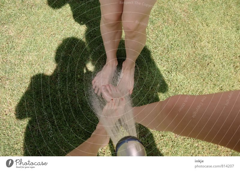 Sommer Mensch Kind Jugendliche Wasser Freude Erwachsene Leben Gefühle Gras Spielen Garten Beine Fuß Freundschaft Freizeit & Hobby