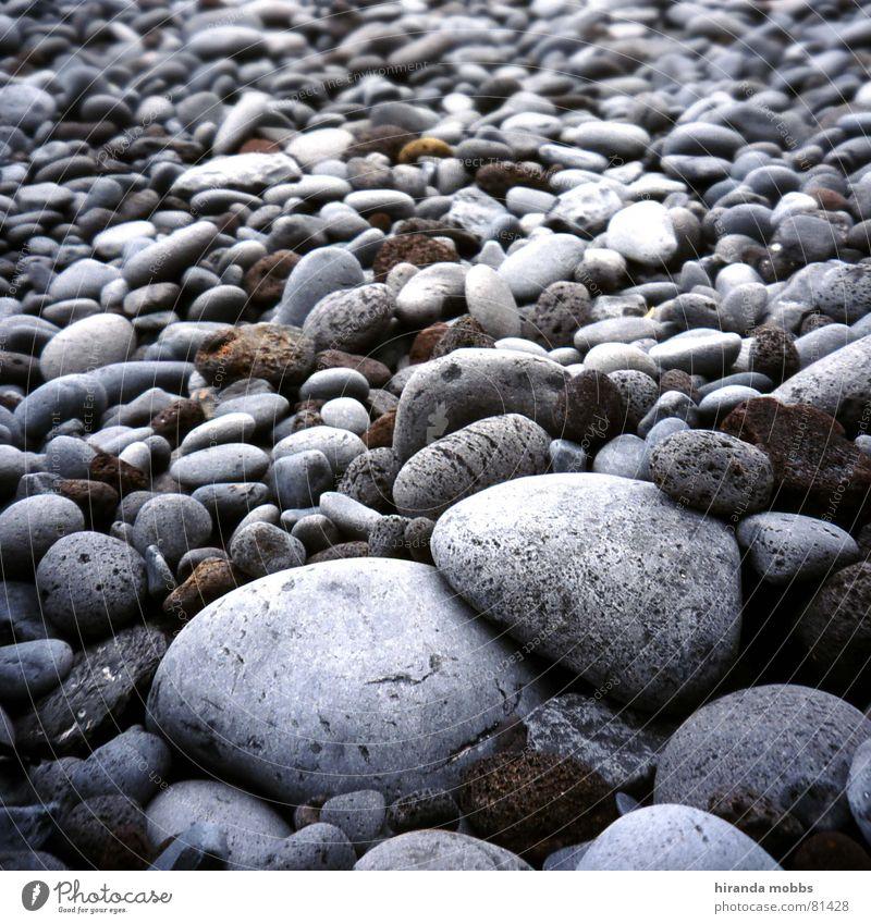 Steinstrand Meer Strand ruhig grau Küste Kreis mehrere rund Gelassenheit viele Seeufer Badestelle farbneutral