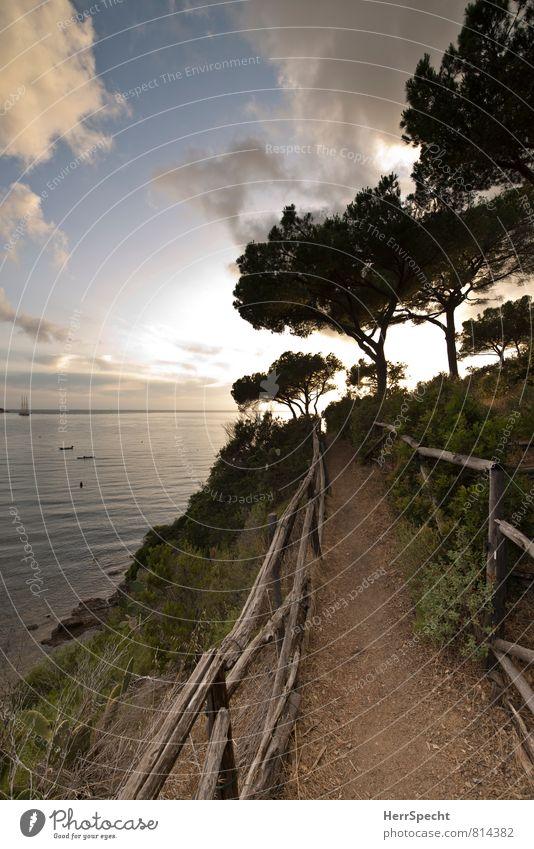 Weg zum Strand Himmel Natur Ferien & Urlaub & Reisen Meer Blume Landschaft Wolken Strand Umwelt Wege & Pfade gehen Horizont Tourismus Insel Schönes Wetter Neigung