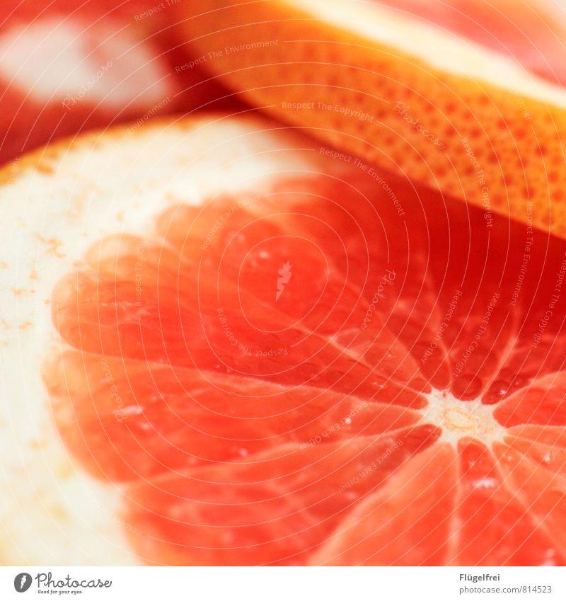 Grapefruit Frucht sauer Sommer saftig orange Fruchtfleisch Gesundheit Ernährung Hülle lecker Farbfoto Schwache Tiefenschärfe