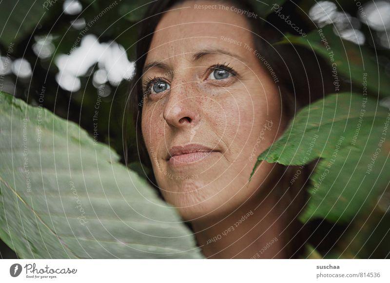 der blick Mensch Frau Natur Jugendliche Pflanze grün Sommer Junge Frau ruhig Blatt 18-30 Jahre Gesicht Erwachsene Auge feminin Frühling