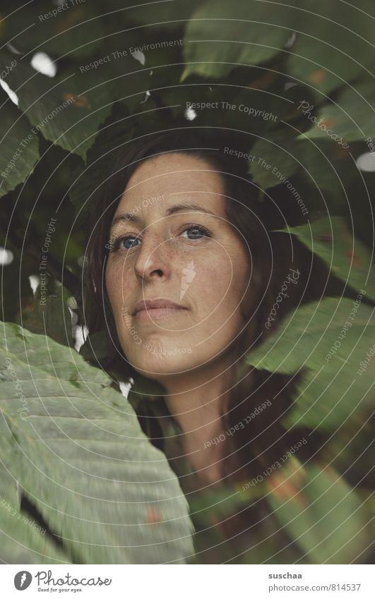 jala in suschaatown II Mensch Frau Natur Jugendliche grün Sommer Junge Frau ruhig Blatt 18-30 Jahre Gesicht Erwachsene Auge feminin natürlich Haare & Frisuren