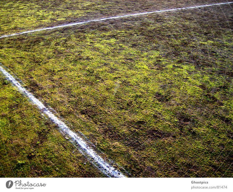 Strich?! Moos?! was ist hier los............. Ecke grün Linie Feld mehrfarbig Schlamm Sport Spielen Herbst Ballsport 90° dreckig gras. grün sportliches Fußball
