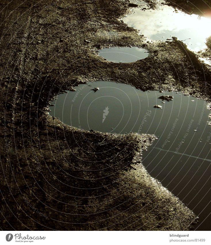Stille Wasser Sind Nicht (Immer) Tief Schlamm Pfütze Reflexion & Spiegelung Licht dunkel nass Gras Feld Wolken Himmel Herbst way mud dreckig Sonne Wege & Pfade