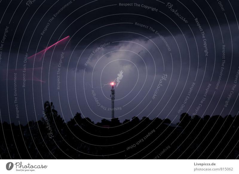 Blitz und Pink Telekommunikation Umwelt Natur Landschaft Himmel Wolken Gewitterwolken Nachthimmel Sommer schlechtes Wetter Unwetter Blitze Pflanze Baum Feld