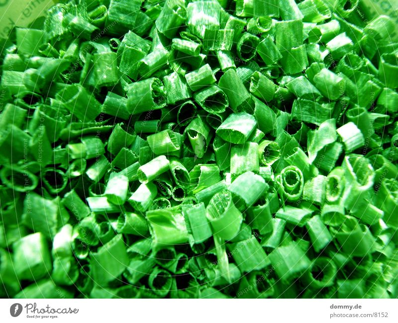 Schnittlauch grün Blatt Gesundheit lecker Kräuter & Gewürze Schnittlauch